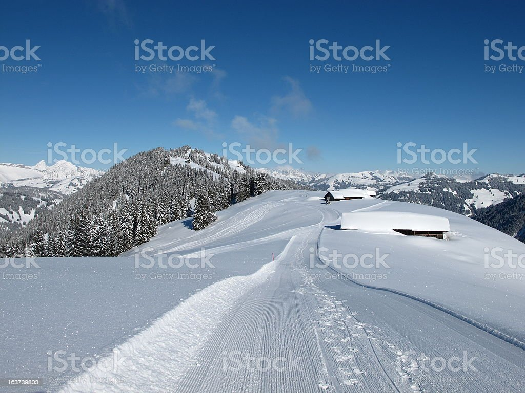 Snow covered huts and forest near Gstaad royalty-free stock photo