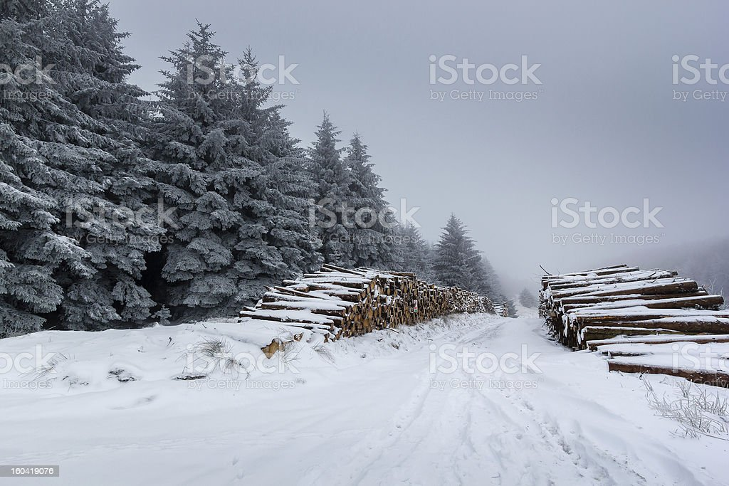 Snow covered logs and fur trees royalty-free stock photo