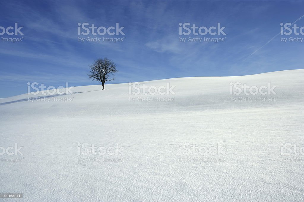 Snow covered meadow stock photo