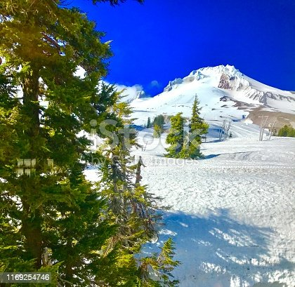 Scenic mountain top view of Mount Hood Oregon with pine trees