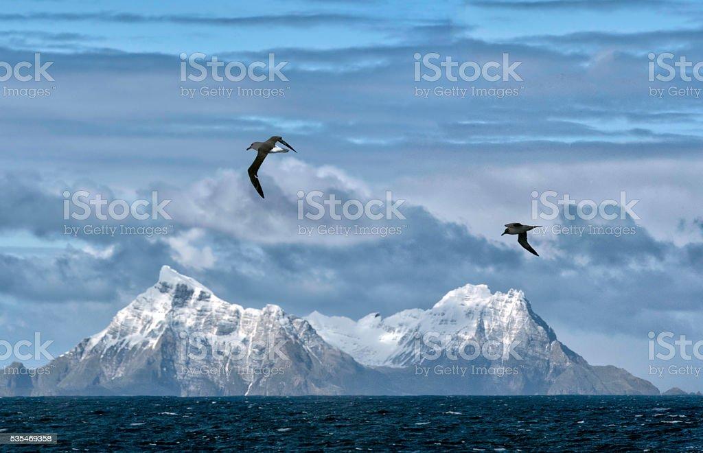 Schneebedeckte Berge, South Georgia Island – Foto