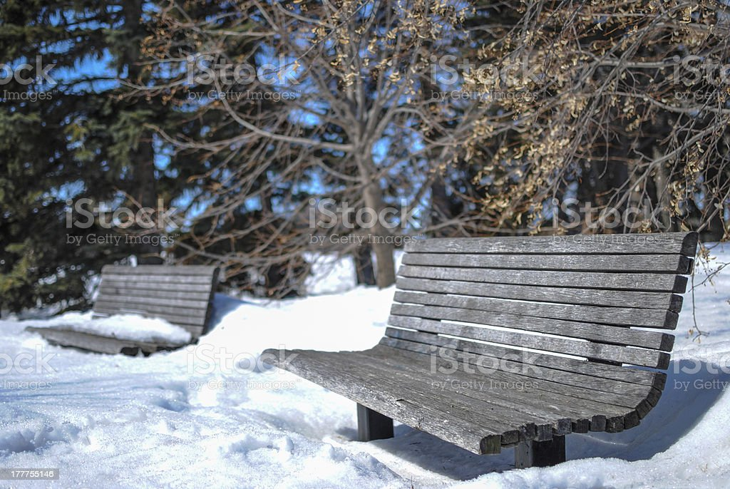Snow Covered Park Benches royalty-free stock photo
