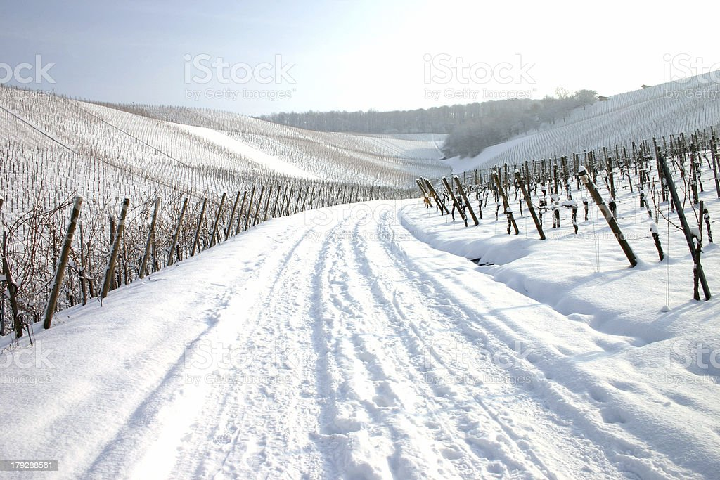 Snow covered path stock photo