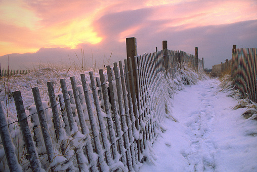 Snow Covered Picket Fence