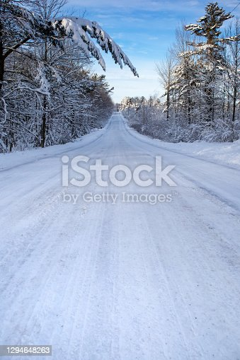 Snow covered road and forest in central Wisconsin in January, vertical