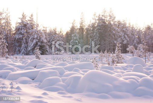 511998996 istock photo Snow covered Rocks in front of a forrest 137335284