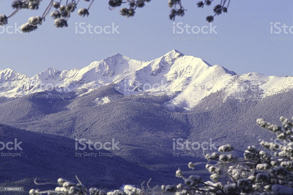 Snow Covered Rocky Mountains royalty-free stock photo