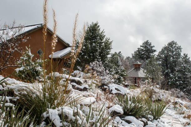 Snow covered scene stock photo