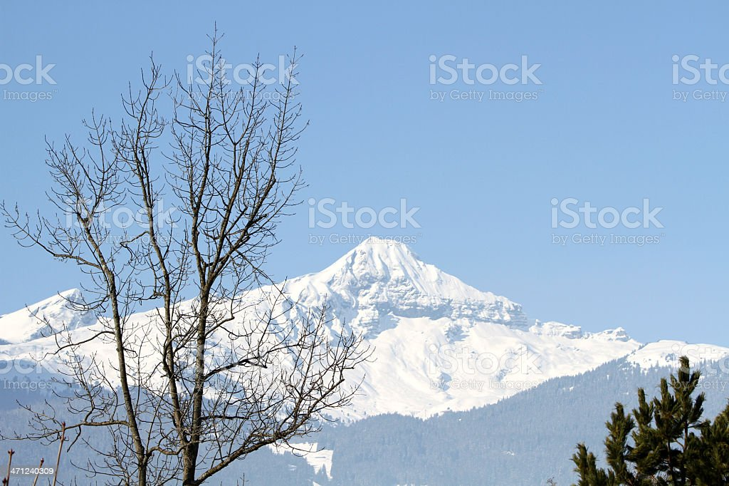 Snow covered Shrekhorn mountain viewed from Grindlewald, Switzerland stock photo