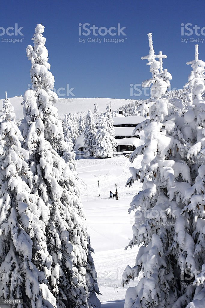 snow covered ski chalet in pine forest royalty-free stock photo