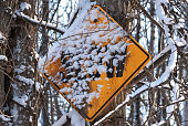 Snow Covered Slow Sign