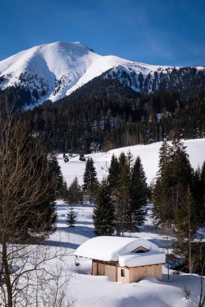 Schneebedecktes häuschendes häatliches Hüttenhaus im Ferienort Hohentauern im Winter – Foto
