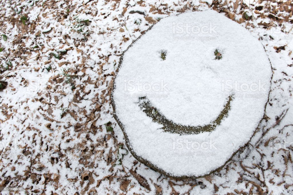 Snow Covered Tree Stump With Smiley Face Emoji Stock Photo