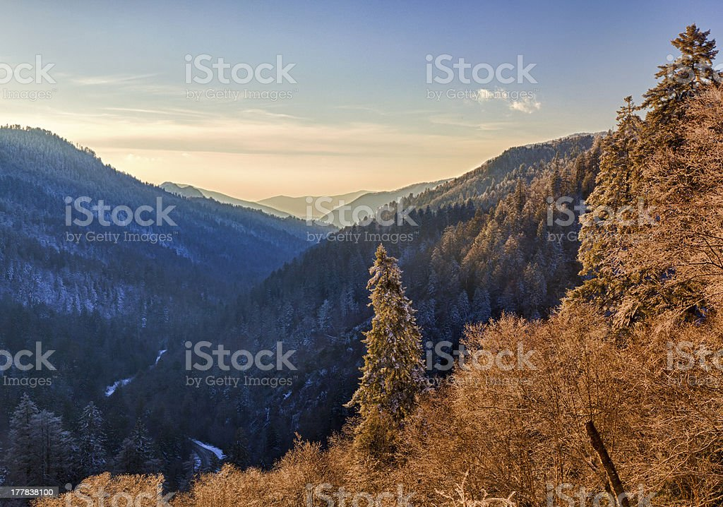 Snow covered trees at sunset in Smoky Mountains royalty-free stock photo