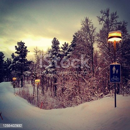 511998996 istock photo Snow covered trees in beautiful winter light 1255402932