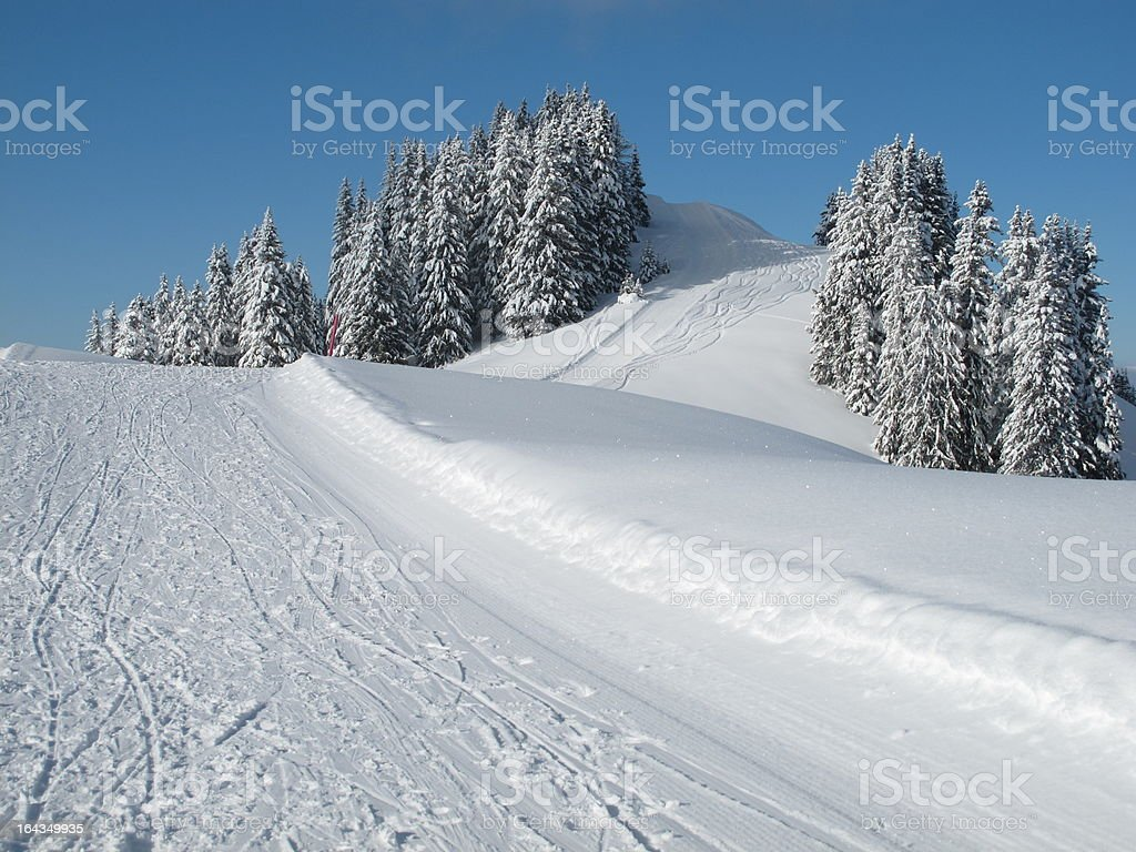 Snow covered trees, slope royalty-free stock photo