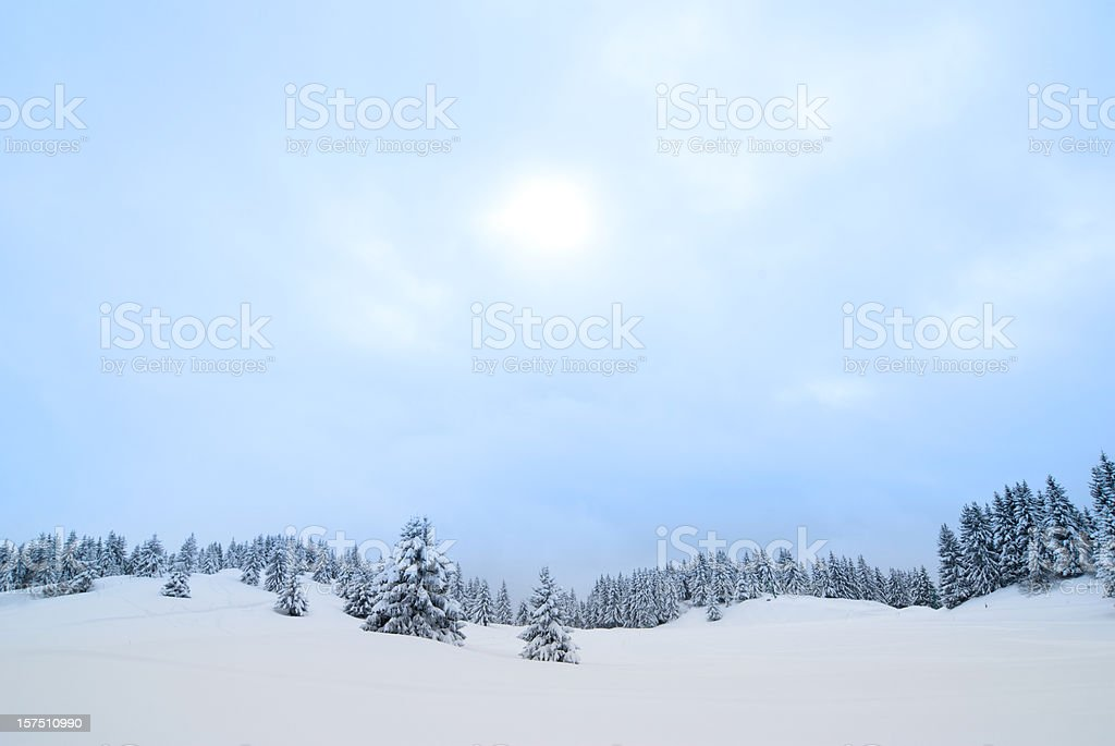 Snow Covered Winter Landscape royalty-free stock photo
