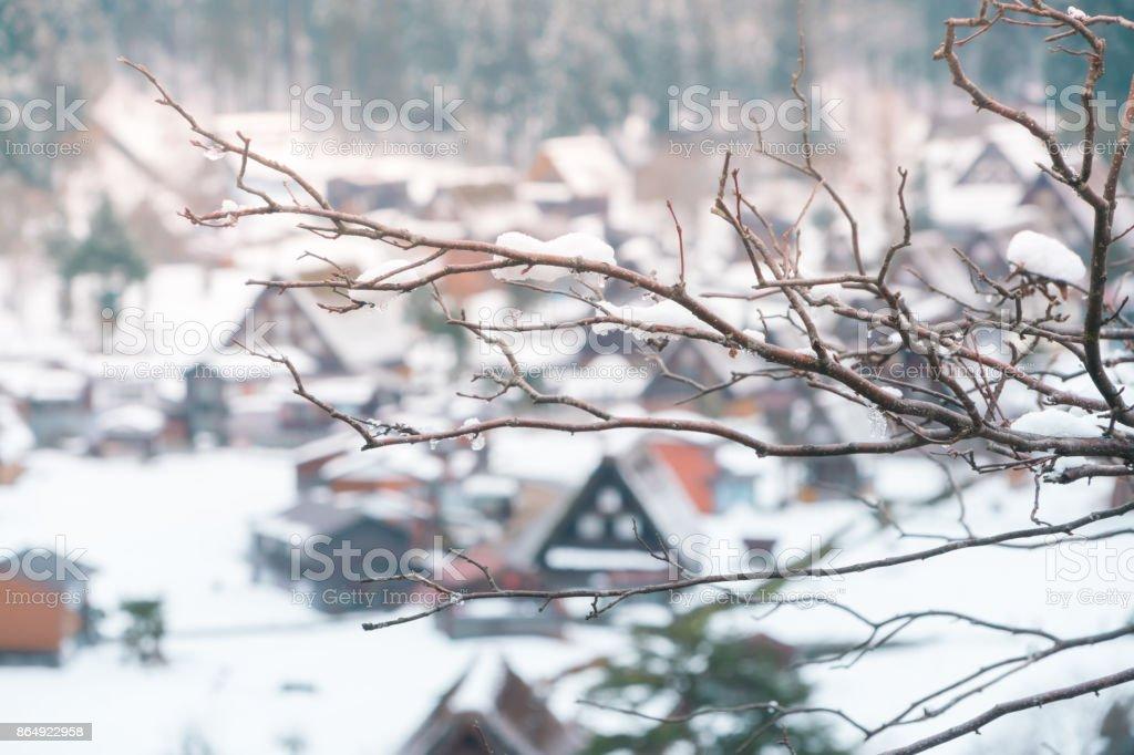Snow fall on tree branch at the view point of Shirakawa go village, Japan stock photo