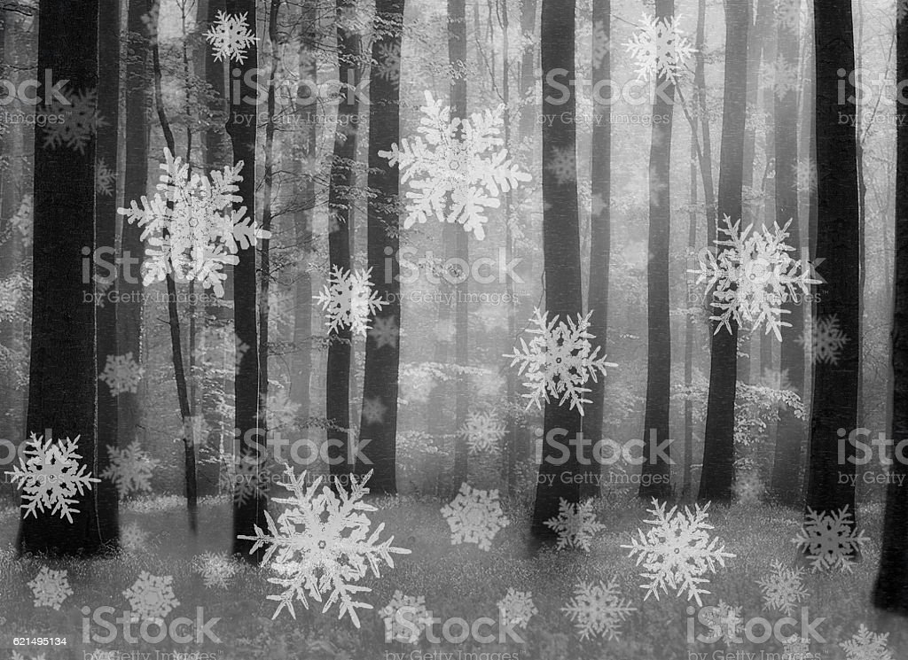 Snow falling in a forrest photo libre de droits