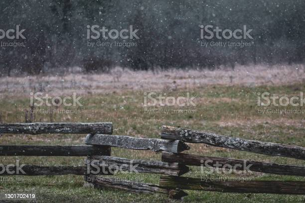 Photo of Snow Falling Lightly In A Rural Field