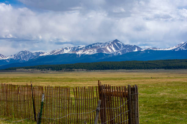 Snow Fence Colorado Rocky Mountains Large green meadow with view of Colorado highest peaks minturn colorado stock pictures, royalty-free photos & images