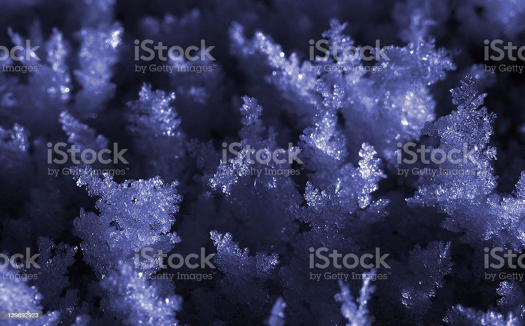 Snow flakes royalty-free stock photo