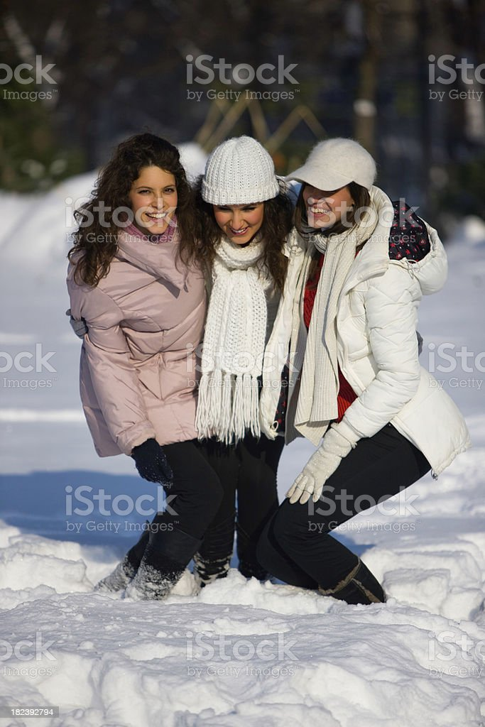 Snow friends royalty-free stock photo