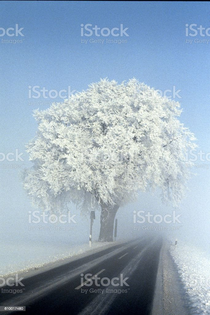 Snow frost and fog, Country road in Germany stock photo