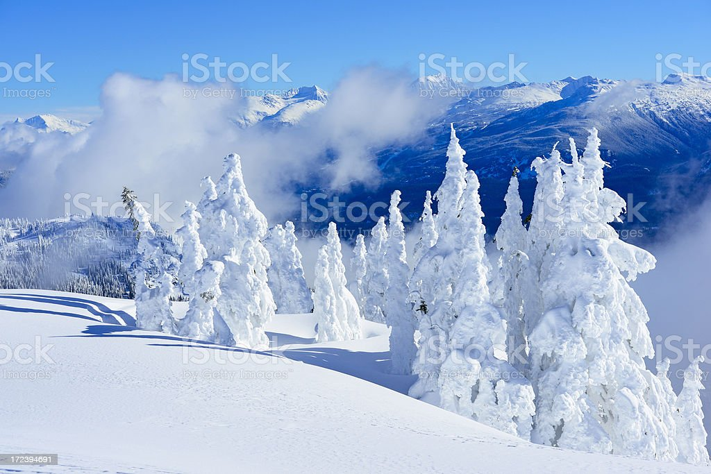 Snow Ghosts royalty-free stock photo