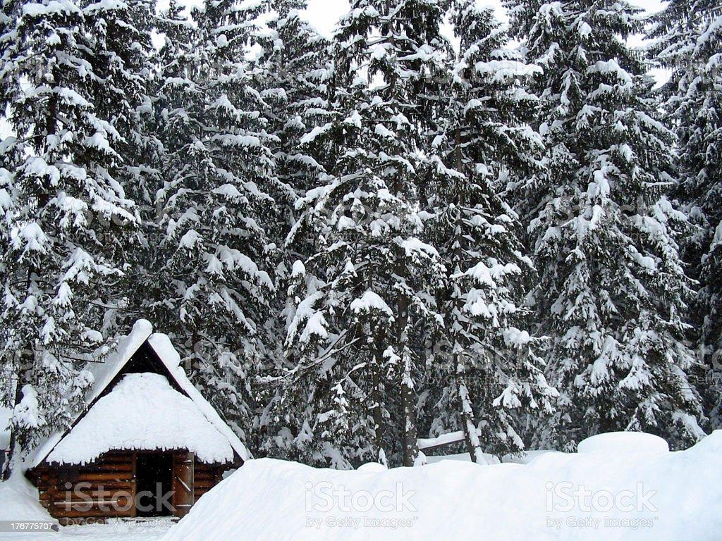 snow house royalty-free stock photo