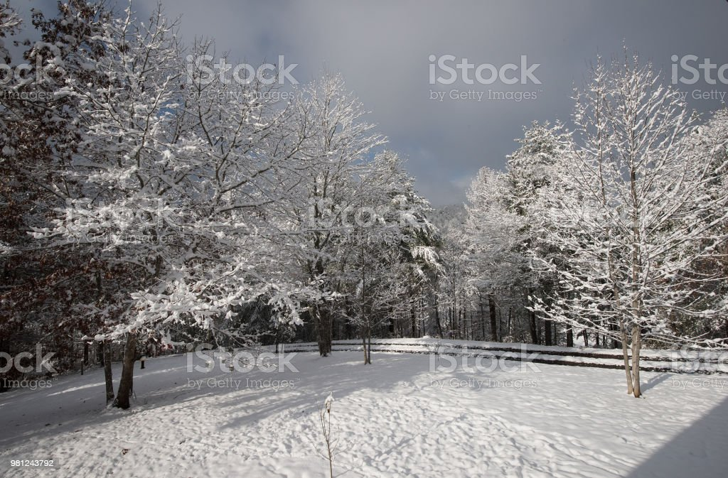 Snow In The Blue Ridge Mountains Stock Photo Download
