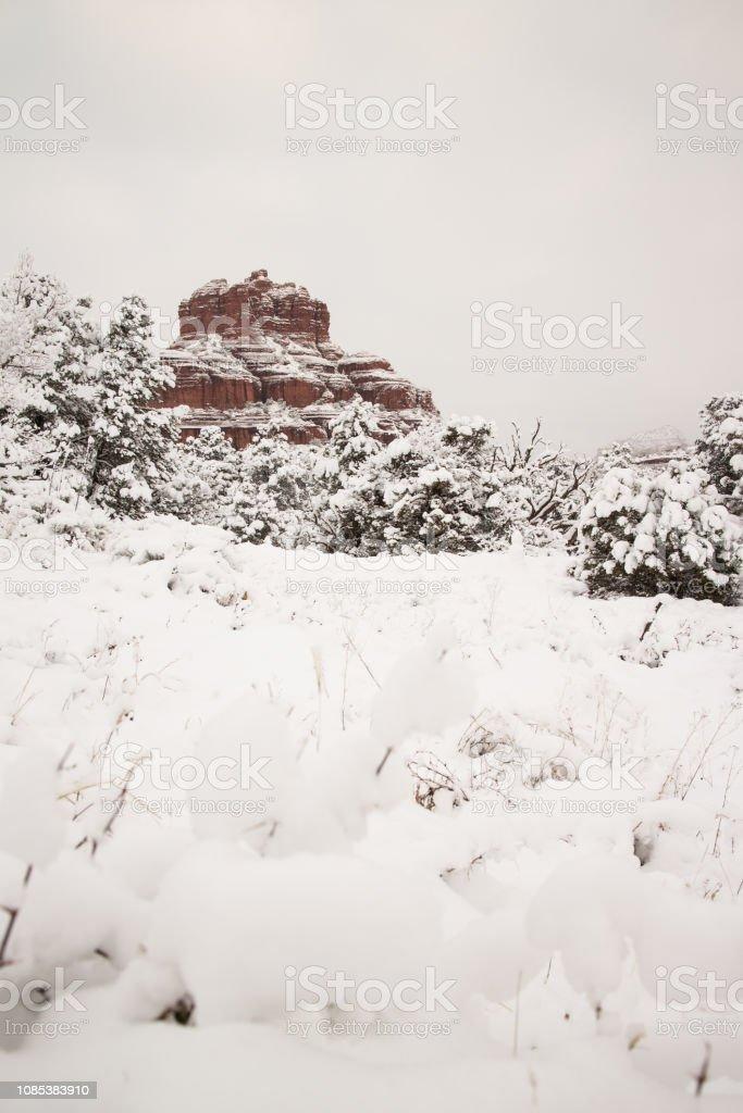 Snow in the Desert stock photo