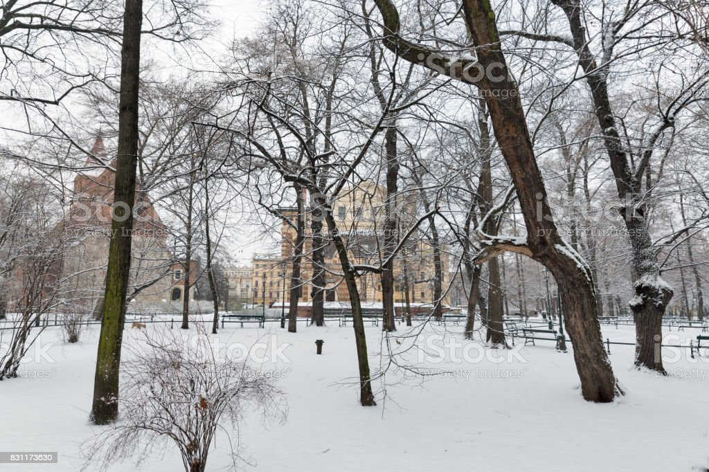 Snow in the park. Krakow. Poland stock photo