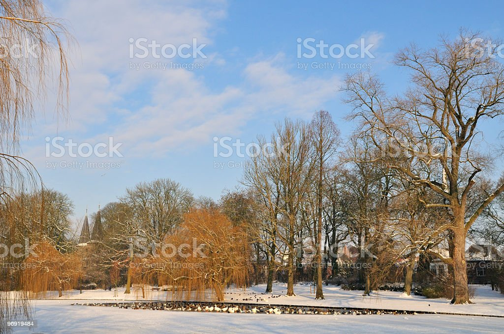 Snow in the park royalty-free stock photo