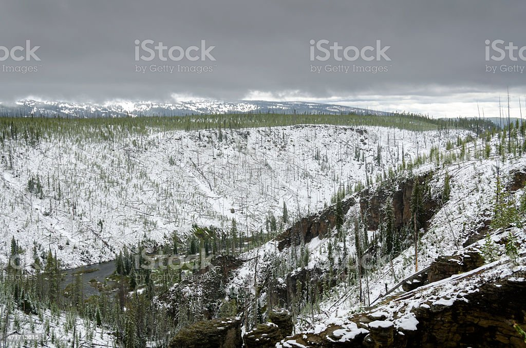 snow in Yellowstone stock photo