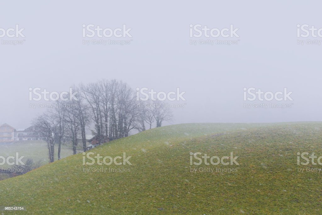 Snow is falling in the countryside of Europe. zbiór zdjęć royalty-free