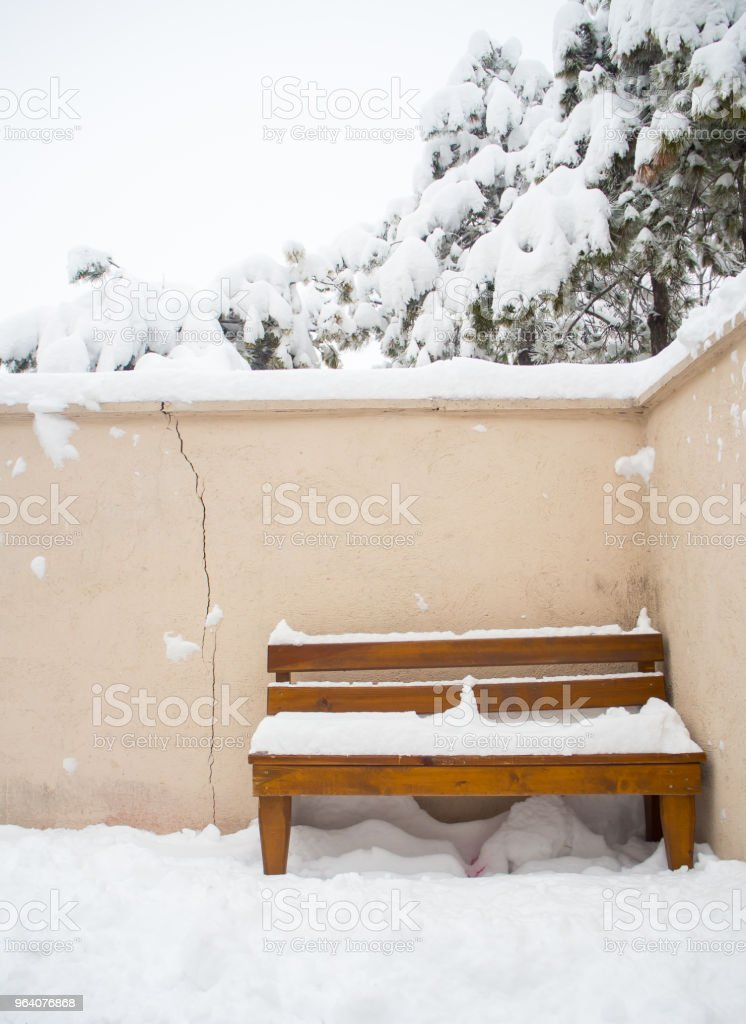 snow landscape and snowdrift on building and trees in parks - Royalty-free Bench Stock Photo