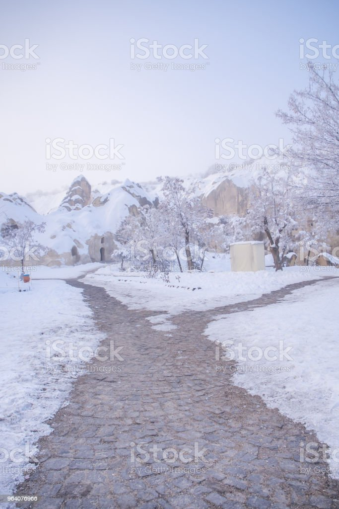 snow landscape and snowdrift on building and trees in parks - Royalty-free Black And White Stock Photo
