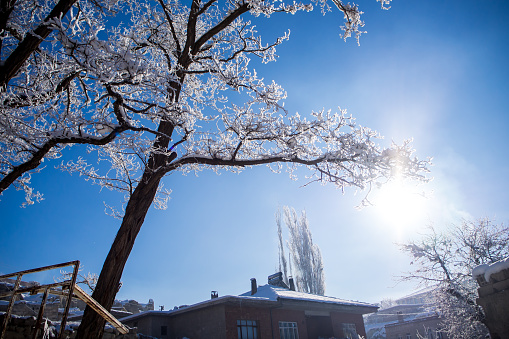 Snow Landscape And Snowdrift On Building And Trees In Parks Stock Photo - Download Image Now