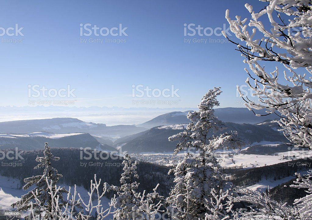 Snow Landscape royalty-free stock photo