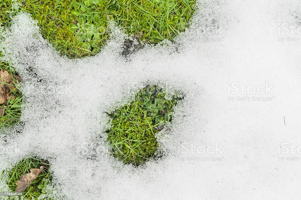 Snow Melting On The A Grass Lawn royalty-free stock photo
