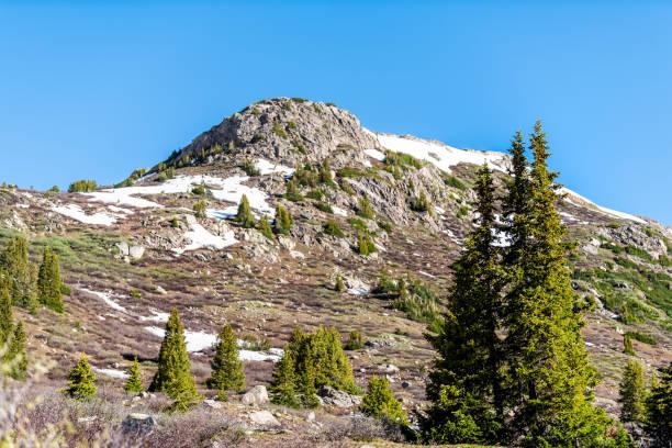 2019 yazında aspen, colorado yakınlarındaki kayalık dağlarda bağımsızlık geçidi'ndeki linkins gölü patikasında kar dağları manzarası ve çam ağaçları - independence day stok fotoğraflar ve resimler