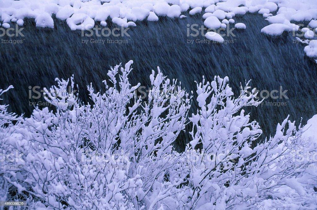 雪のリバーサイド ストックフォト