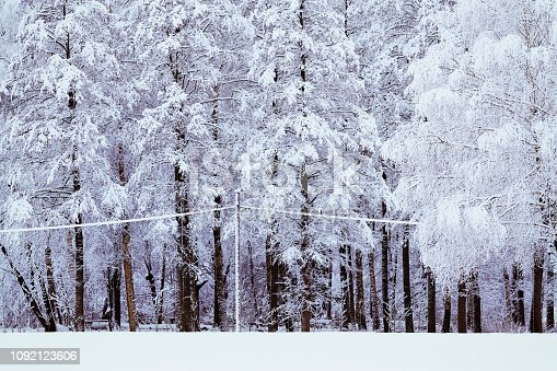 snow on electric cable in forest from sweden nature