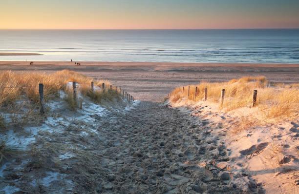 snow on sand dune at North sea coast foto