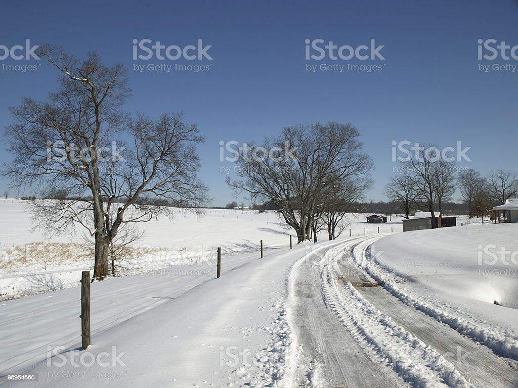 Snow on the ground royalty-free stock photo