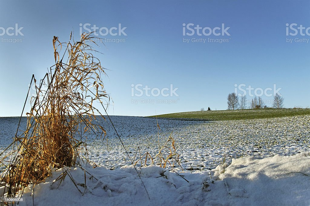 Snow on the land. royalty-free stock photo