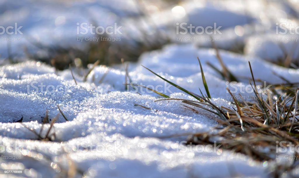 Snow on the lawn. stock photo
