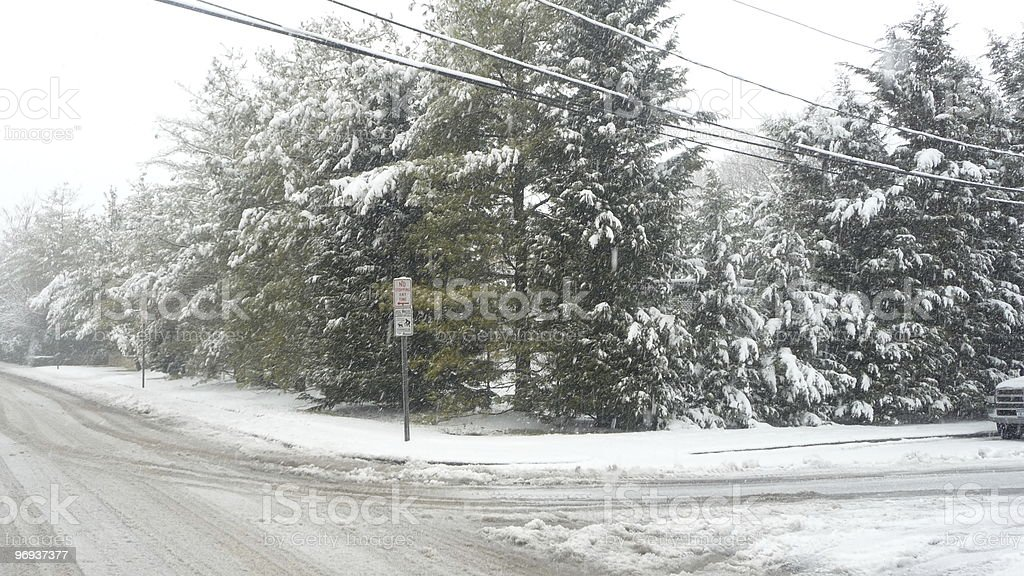 Snow on trees and street in suburbs royalty-free stock photo