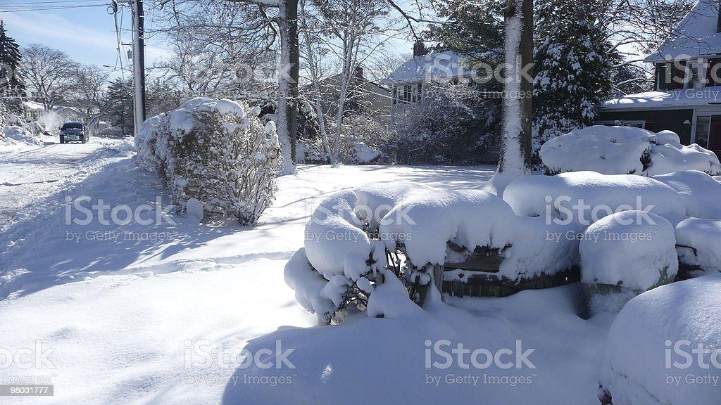Alberi e neve sulla strada in periferia foto stock royalty-free